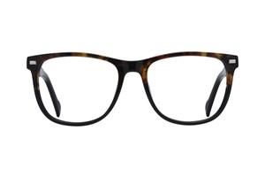 Lunettos Jesse Tortoise Glasses