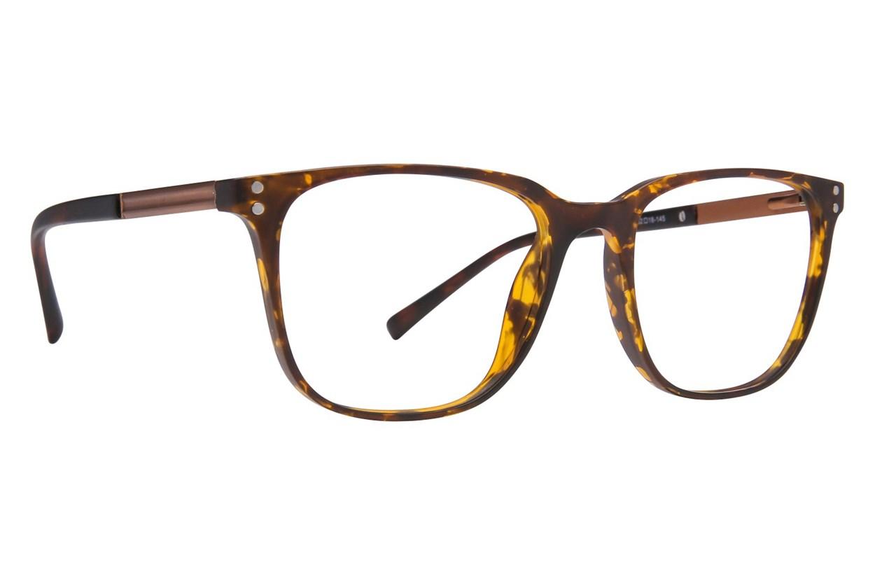 Lite Design LD1007 Tortoise Glasses