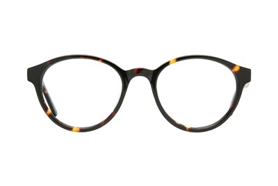 Eight To Eighty Eyewear Ollie Tortoise