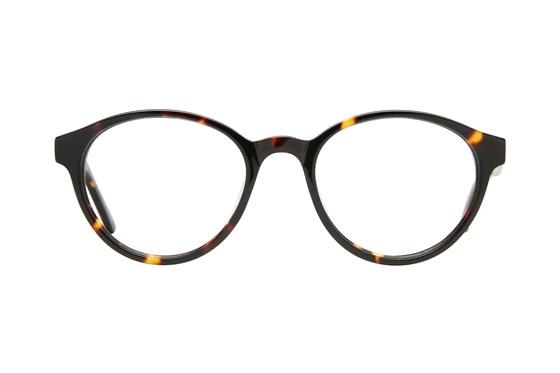 Eight To Eighty Eyewear Ollie Tortoise Glasses