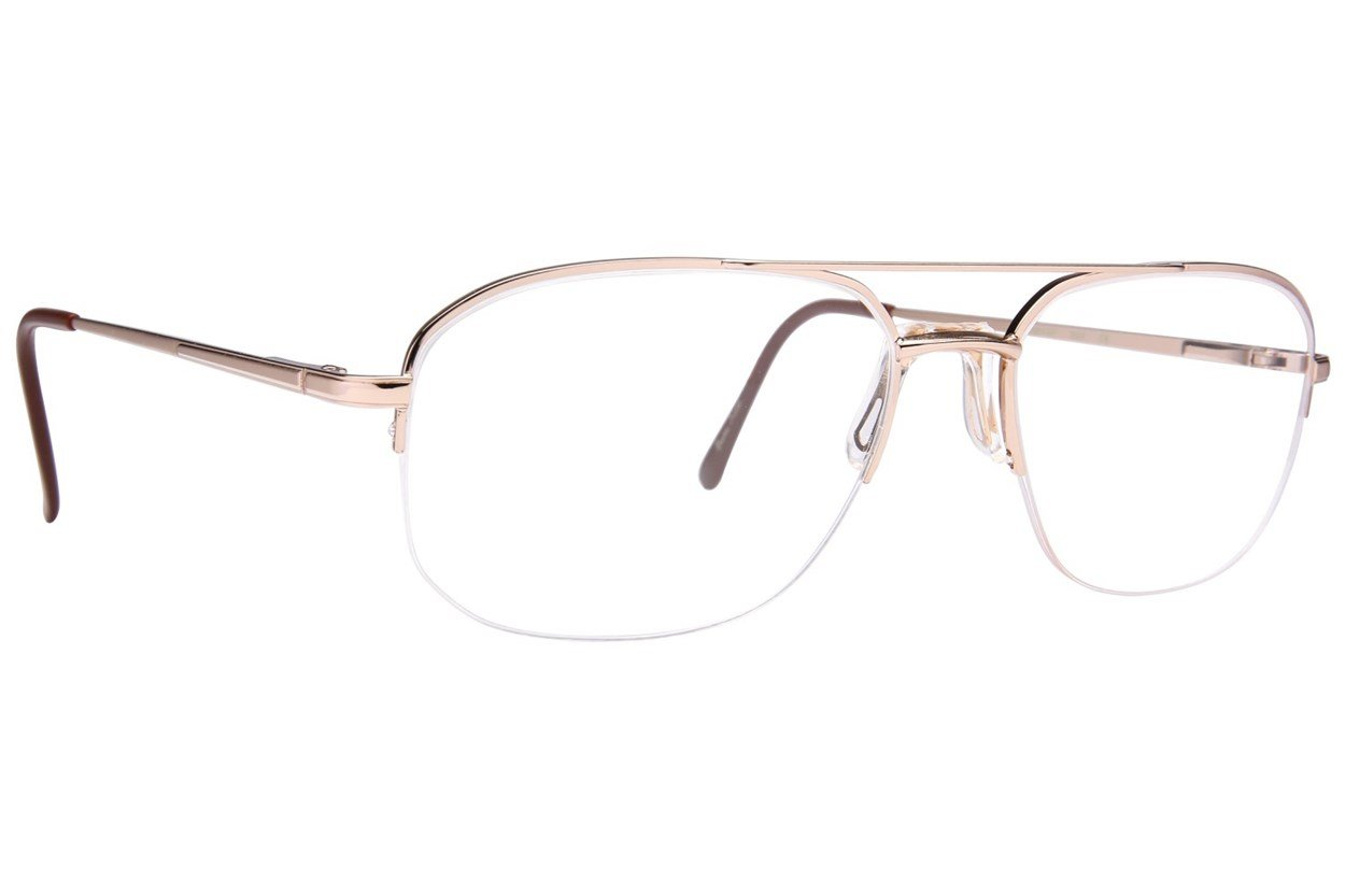 Stetson ST XL 29 Gold Glasses