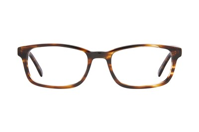 Eight To Eighty Eyewear Terry Tortoise