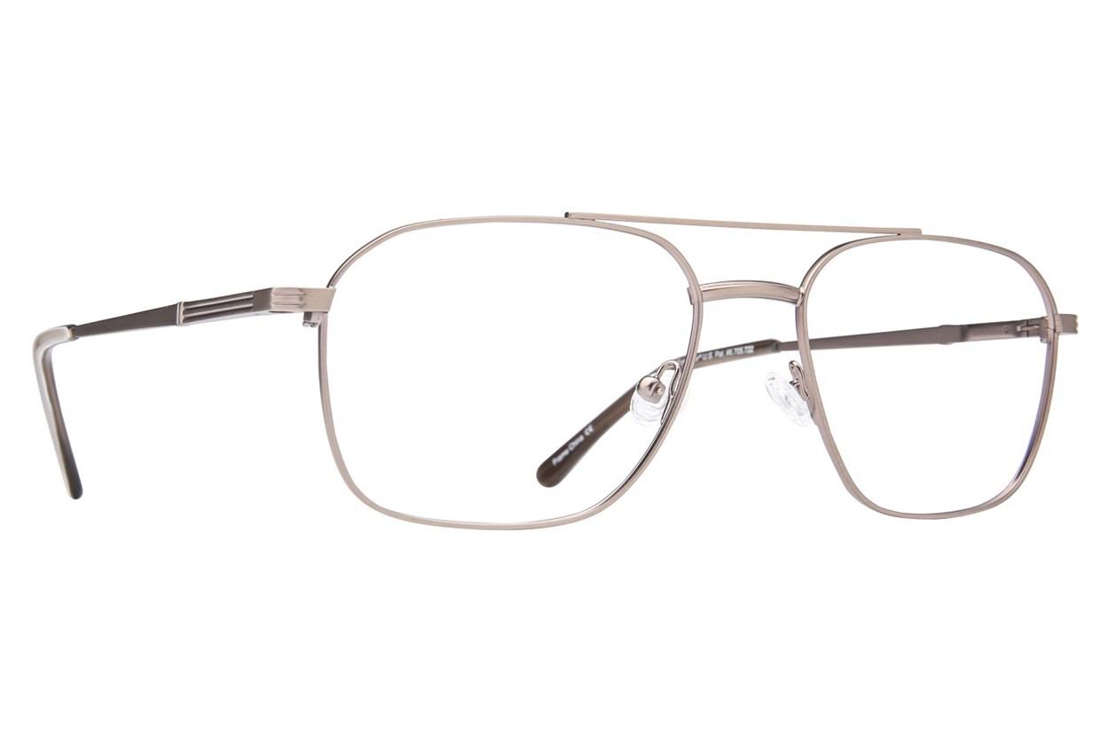 Revolution 451 Silver Glasses