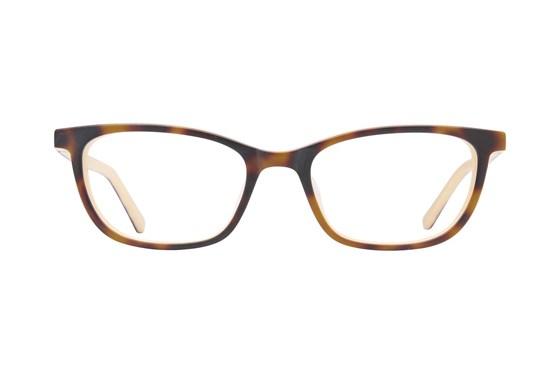Revolution 782 Brown Glasses