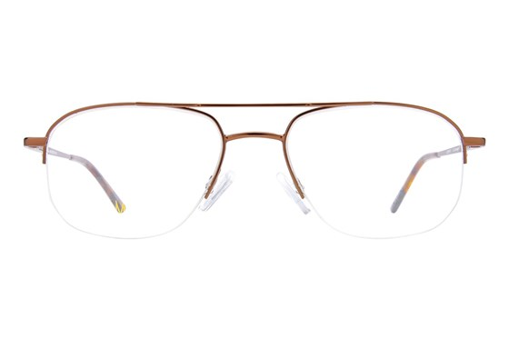 Caravaggio Ardon Brown Glasses