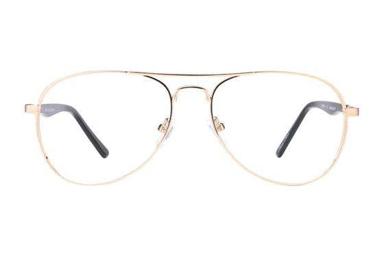 Caravaggio C807 Gold Glasses