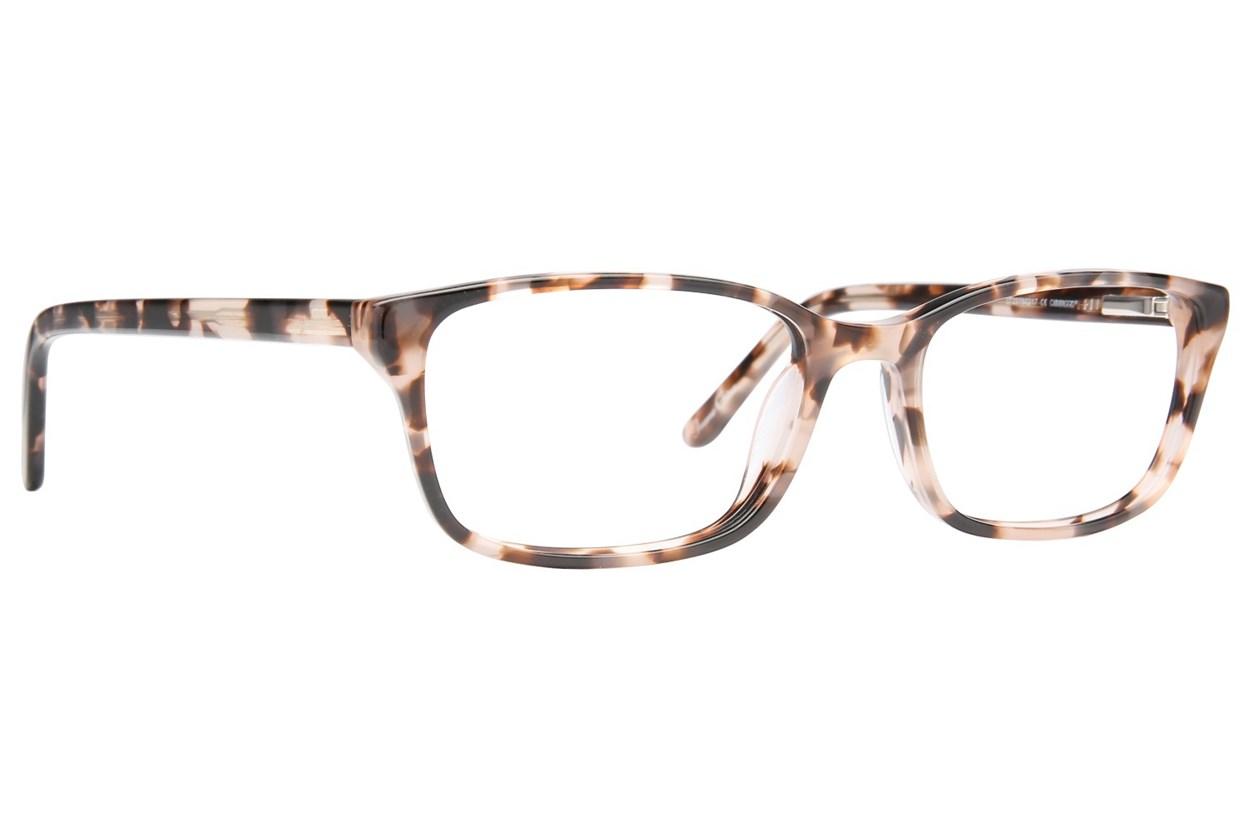 Caravaggio C808 Tortoise Glasses