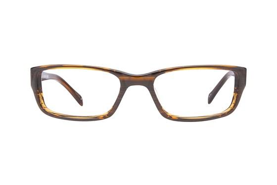 TMX by Timex Inbound Brown Glasses