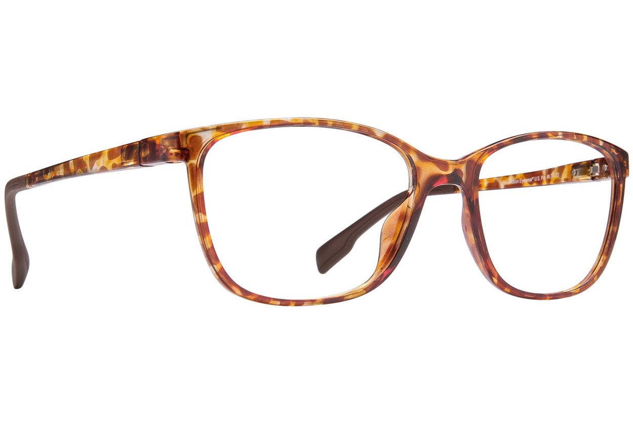 Revolution Portland Tortoise Glasses