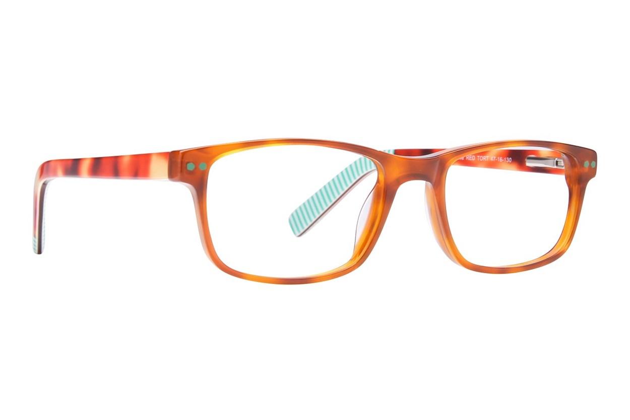 Picklez Duke Tortoise Glasses