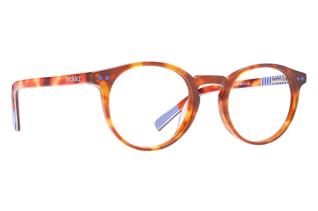 Picklez Baxter Tortoise Tortoise Glasses