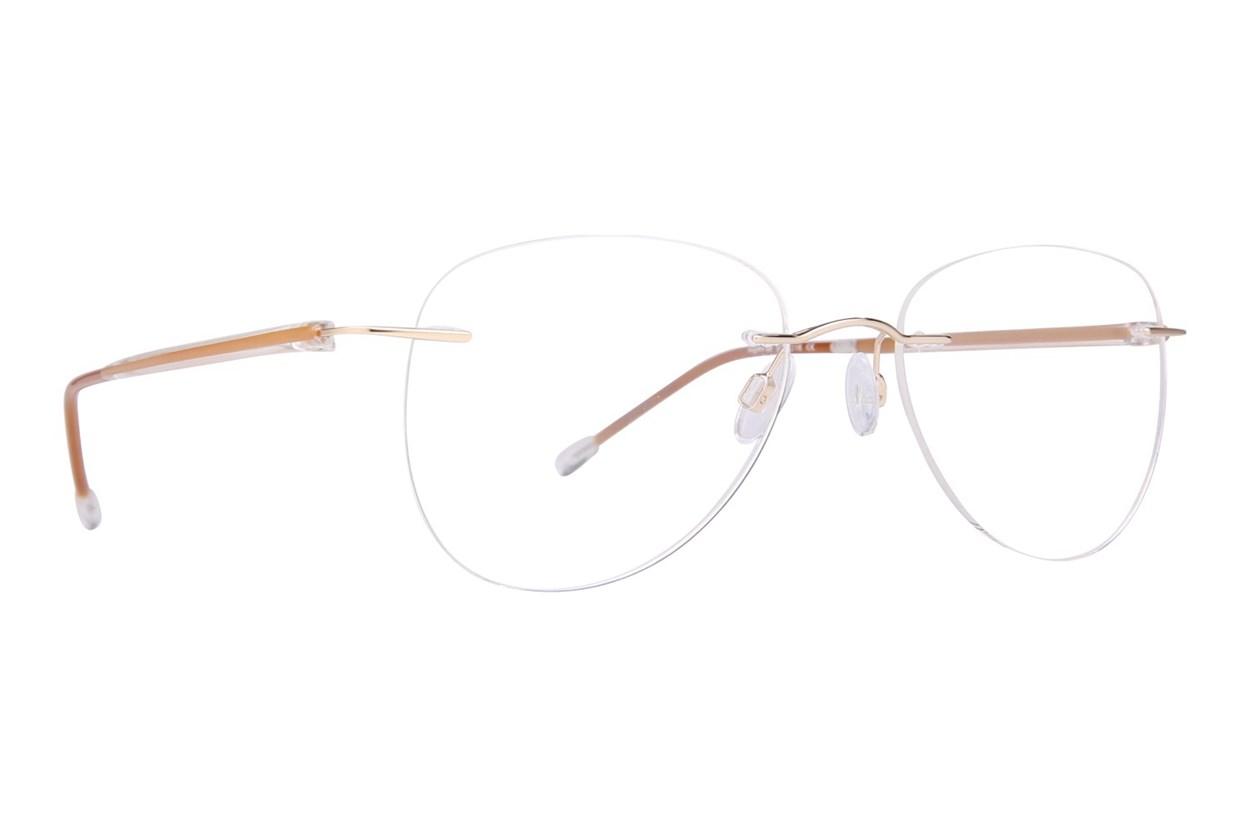 Invincilites Sigma M Brown Glasses