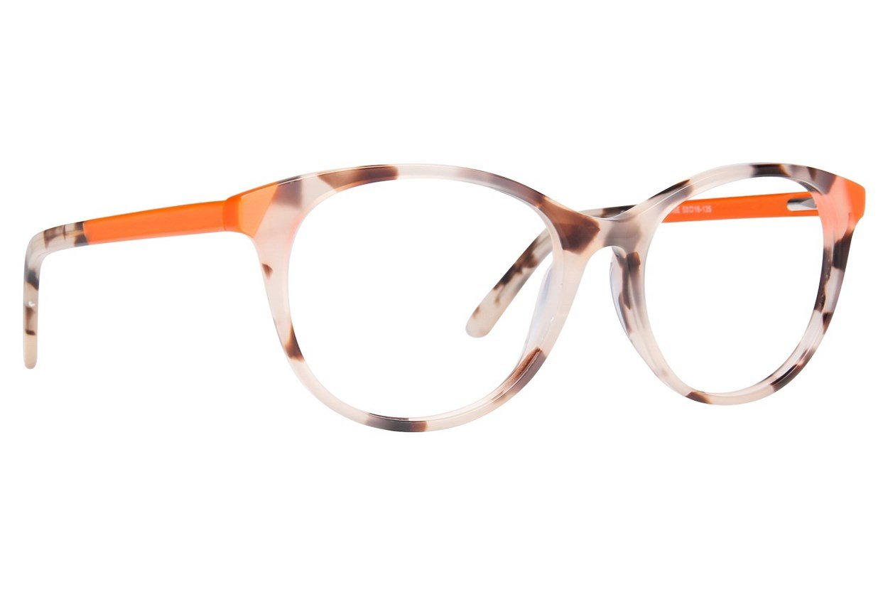 Westend Cherry Creek Tortoise Glasses