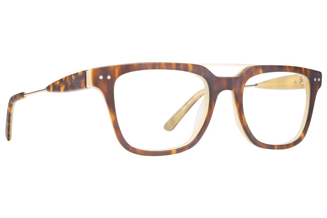Westend Parlin Manor Tortoise Glasses
