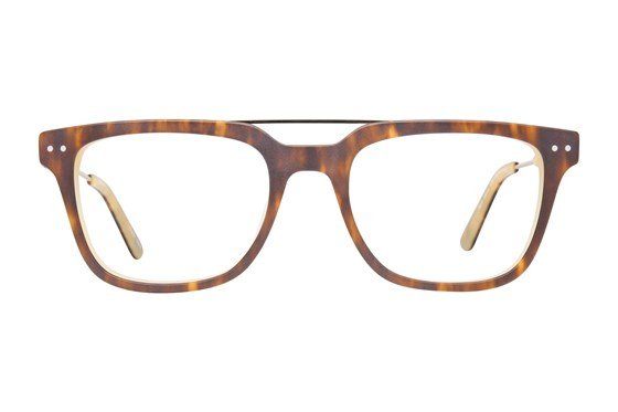 Westend Parlin Manor Tortoise Glasses