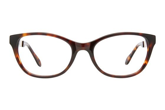 Moschino MO288V Tortoise Glasses