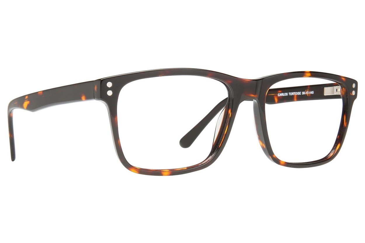 Eight To Eighty Eyewear Carlos Tortoise Glasses