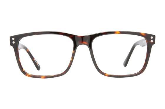 Eight To Eighty Eyewear Carlos Tortoise Glasses