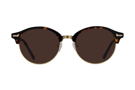 Westend German Village Tortoise Sunglasses