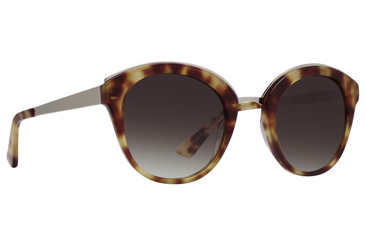 Westend New Albany Tortoise Sunglasses