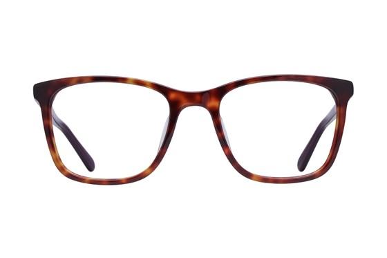 Dereon DOV535 Tortoise Glasses