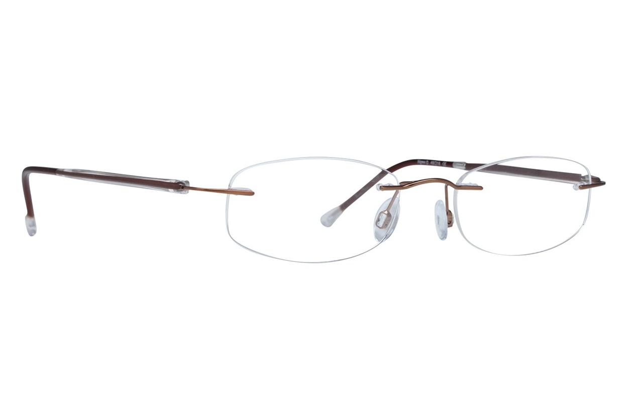 Invincilites Sigma D Brown Glasses