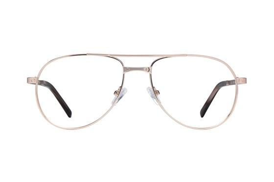 Sean John SJO5100 Gold Glasses