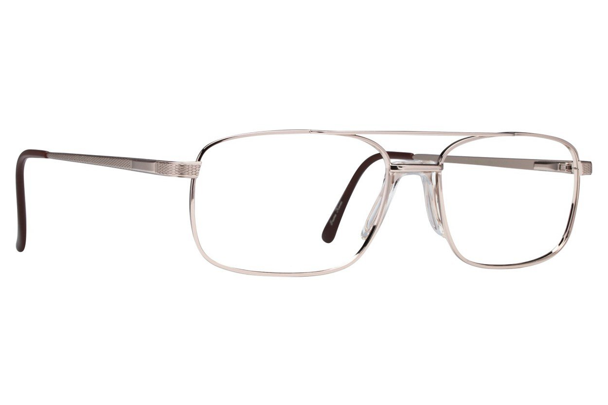 Stetson ST XL 23 Eyeglasses - Gold