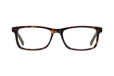 TapouT TAP844 Tortoise