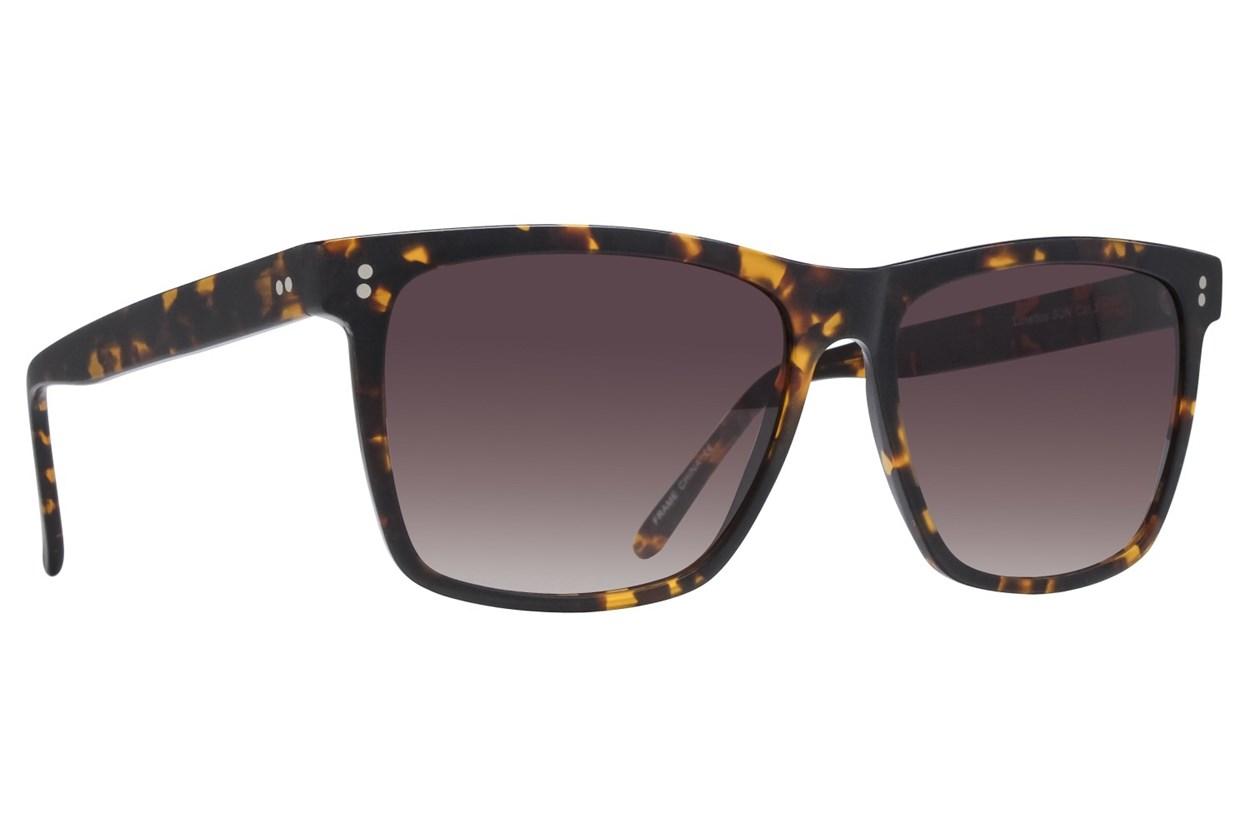 Lunettos Neil Tortoise Sunglasses