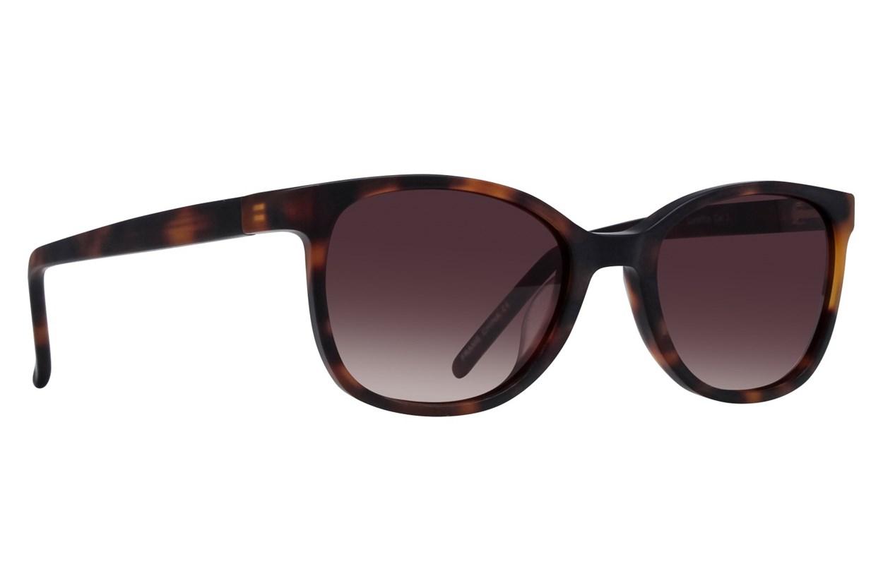 Lunettos Aurora Tortoise Sunglasses