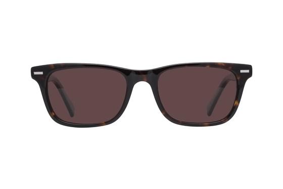 Lunettos Nova Tortoise Sunglasses