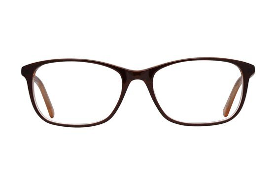Dea Extended Size Trieste Brown Glasses