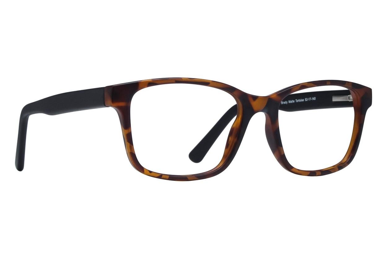 Lunettos Brady Tortoise Glasses