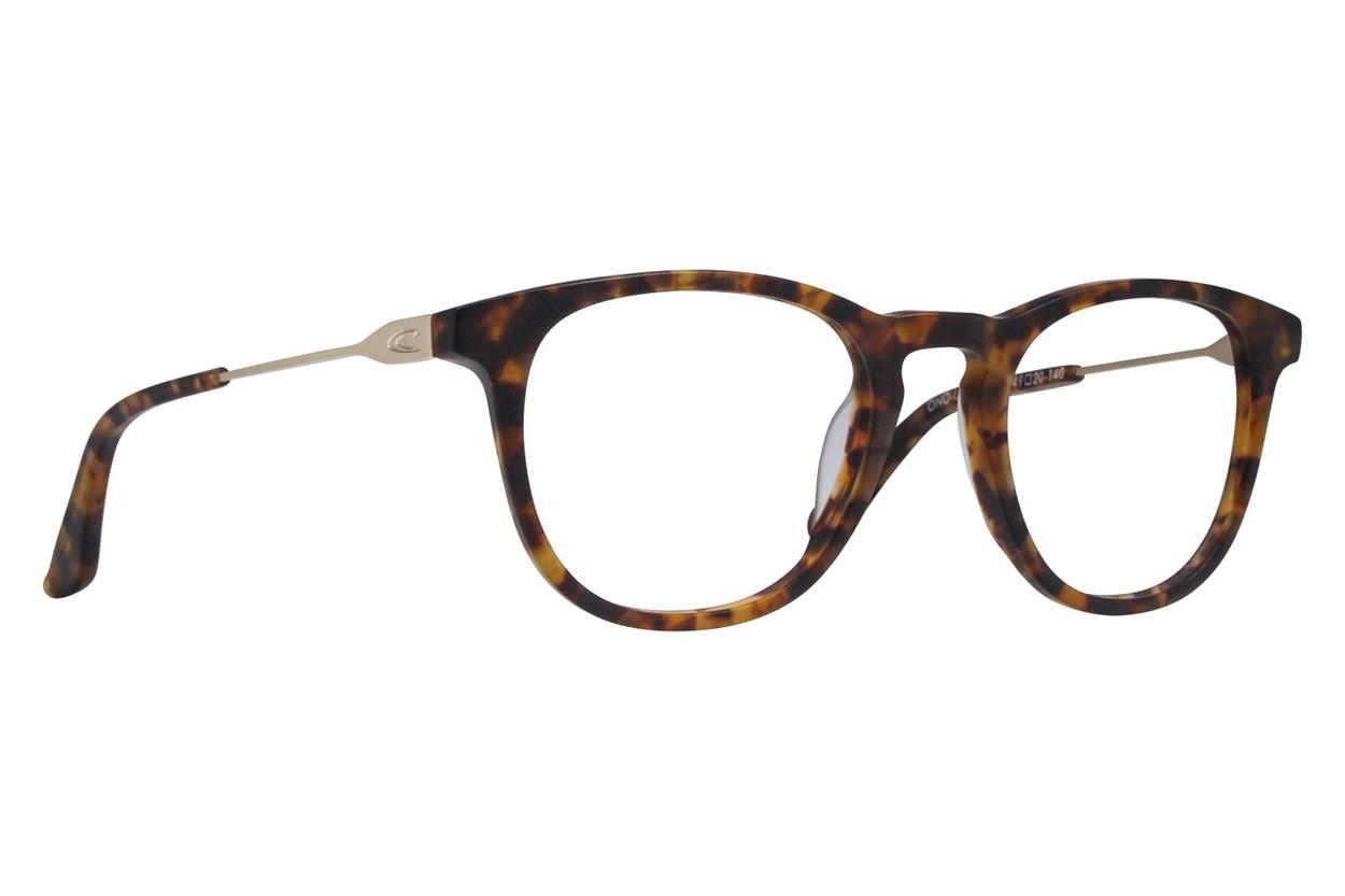 O'Neill Luna Tortoise Glasses