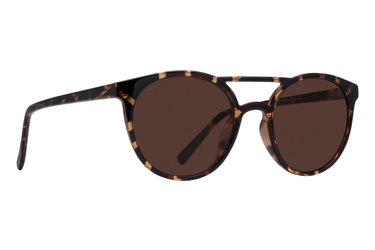 Lunettos Ashton Tortoise Sunglasses