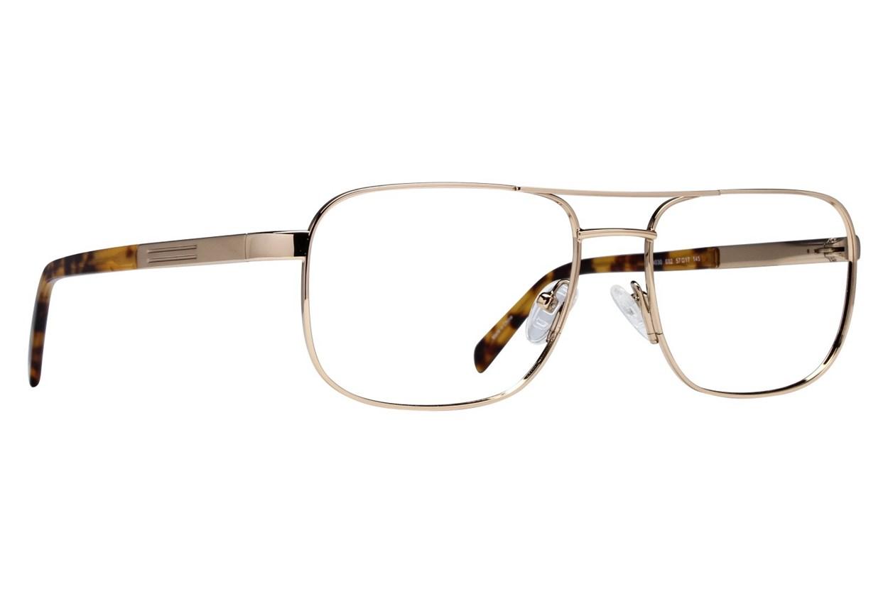 Viva VV4030 Gold Glasses