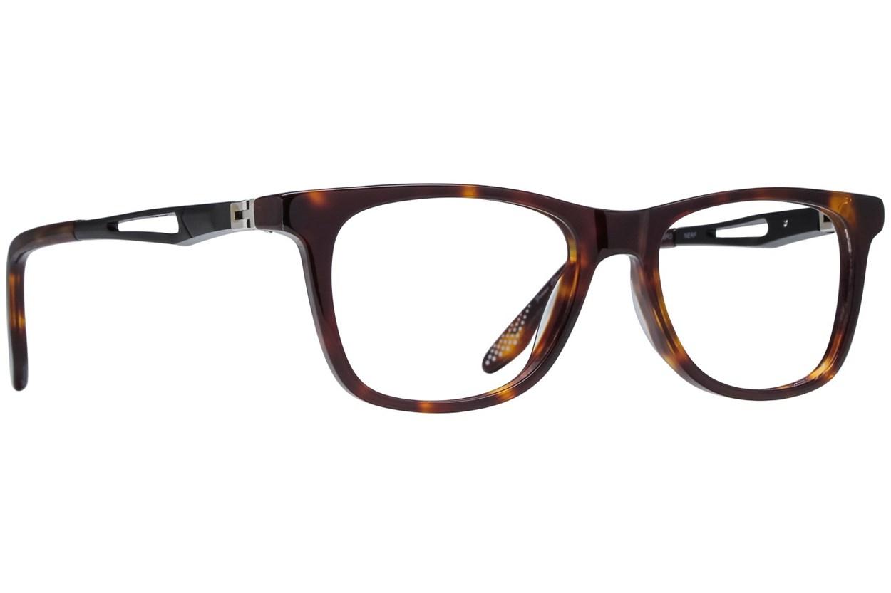 NERF Carl Tortoise Glasses