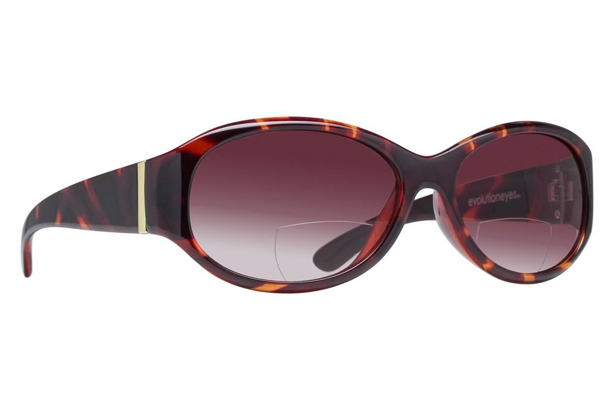 Evolutioneyes TR07114SR Reading Sunglasses Tortoise ReadingGlasses