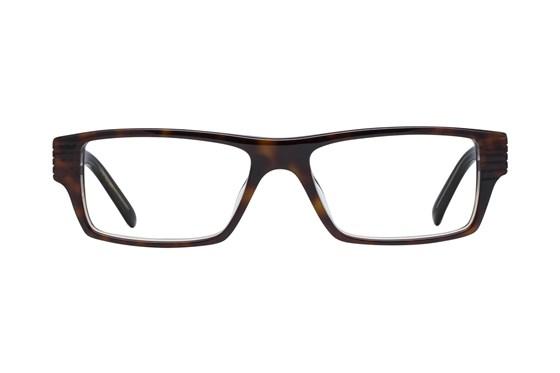 Rocawear R223 Tortoise Glasses