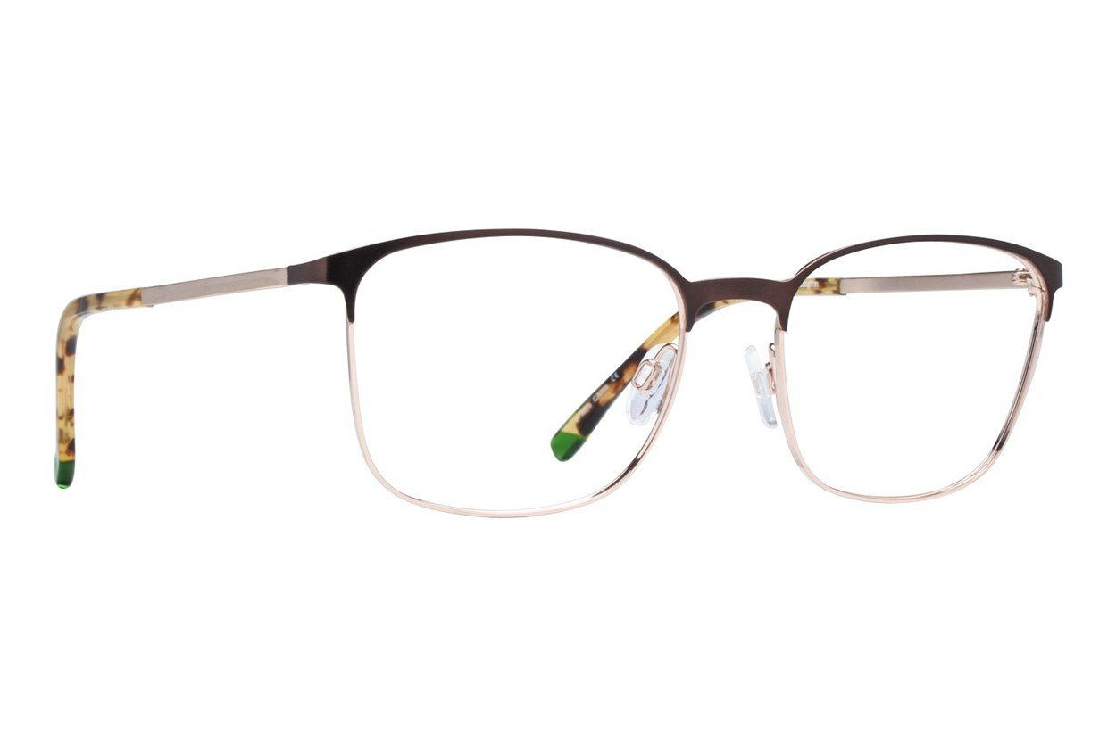 Arlington AR1057 Brown Glasses