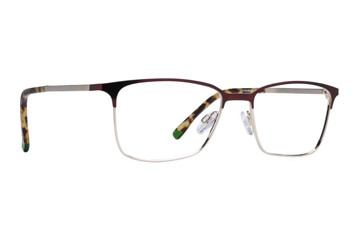 Arlington AR1059 Brown Glasses
