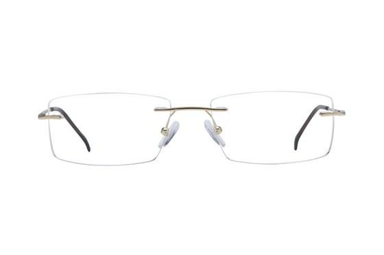 Arlington AR1046 Gold Glasses