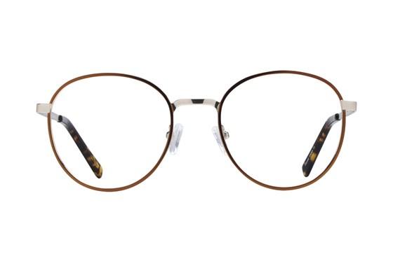 Westend Bridge Park Brown Glasses