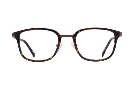 Westend Highland Square Tortoise Glasses