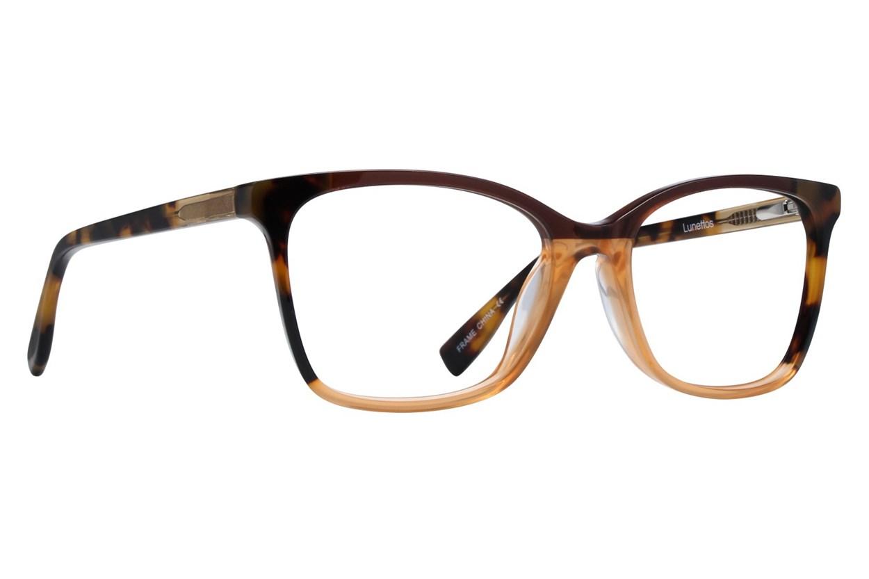 Lunettos Shay Tortoise Glasses