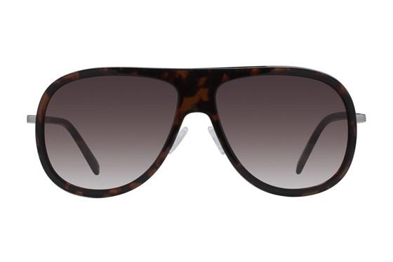 Westend Highlands Tortoise Sunglasses