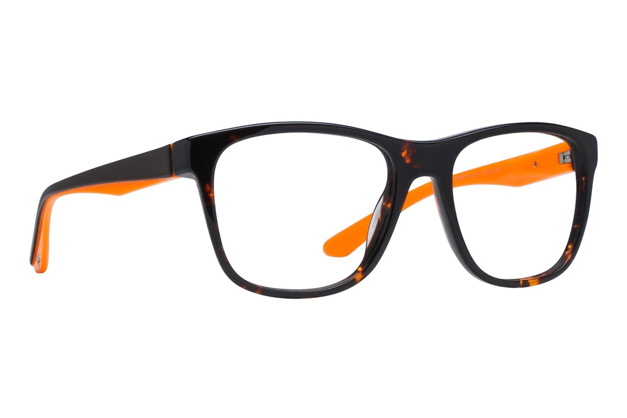 Puma PU0067O Tortoise Glasses