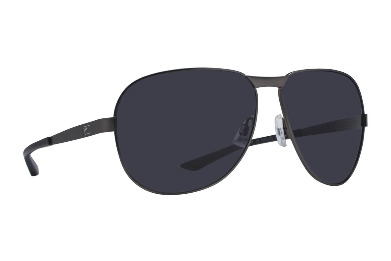 Puma PU0102S Silver Sunglasses