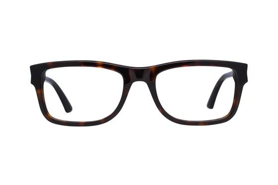 Puma PU0047O Tortoise Glasses